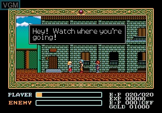 In-game screen of the game Ys III - Wanderers from Ys on Sega Megadrive