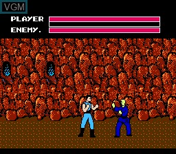 In-game screen of the game Fighting Road on Nintendo NES