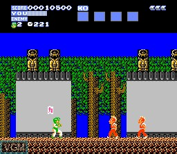 In-game screen of the game Flying Dragon - The Secret Scroll on Nintendo NES
