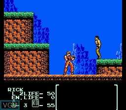 In-game screen of the game Flying Warriors on Nintendo NES