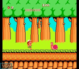 Adventure Island Part II, The