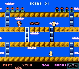 In-game screen of the game Rod Land on Nintendo NES