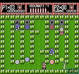 In-game screen of the game Rockball on Nintendo NES