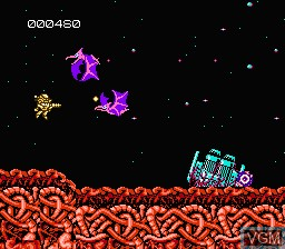In-game screen of the game Abadox - The Deadly Inner War on Nintendo NES