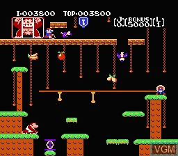 In-game screen of the game Donkey Kong Jr. on Nintendo NES