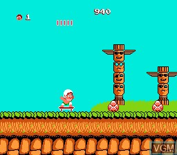 In-game screen of the game Adventure Island on Nintendo NES