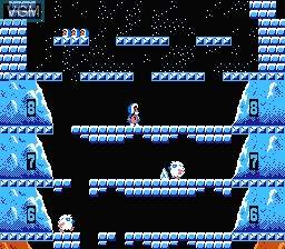 In-game screen of the game Ice Climber on Nintendo NES