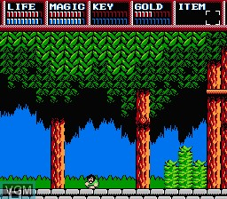 In-game screen of the game Legacy of the Wizard on Nintendo NES