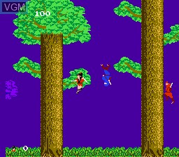 In-game screen of the game Legend of Kage, The on Nintendo NES