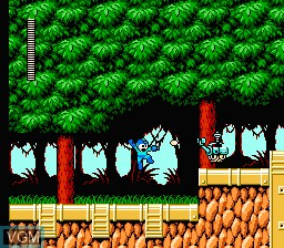 In-game screen of the game Megaman VI on Nintendo NES