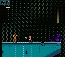 In-game screen of the game Shadow of the Ninja on Nintendo NES
