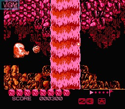 In-game screen of the game Zombie Nation on Nintendo NES