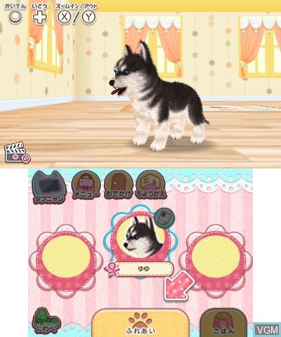 Kawaii Pet to Kurasou! Wan Nyan & Idol Animal