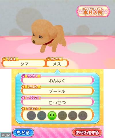 Wan Nyan Doubutsu Byouin - Pet no Oisha-san ni Narou!