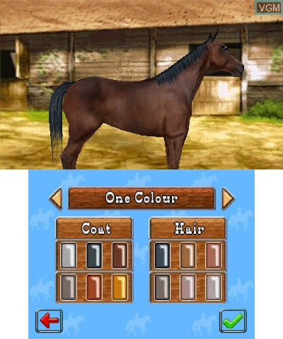 In-game screen of the game 2 in 1- Horses 3D Vol.3 - My Riding Stables 3D - Jumping for the Team and My Western Horse 3D on Nintendo 3DS