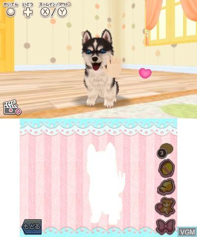 In-game screen of the game Kawaii Pet to Kurasou! Wan Nyan & Idol Animal on Nintendo 3DS