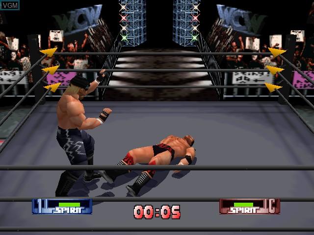 WCW-nWo Revenge
