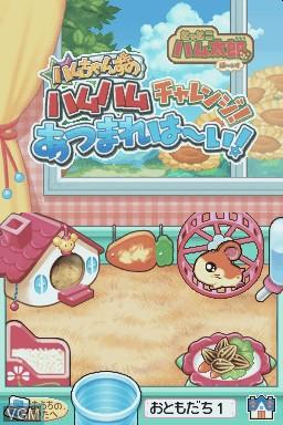 Hamtaro - Joue avec les Ham-Hams