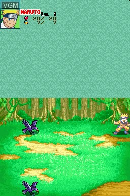Naruto - Path of the Ninja for Nintendo DS - The Video Games