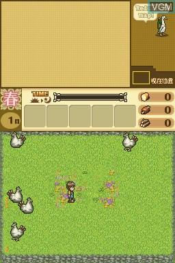 Hakoniwa Seikatsu - Hitsuji Mura DS