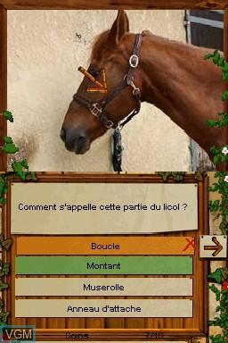 Equitation - Galops 1 a 7