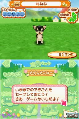 Machi no Pet-ya-san DS 2 - Wannyan 333-hiki Daishuugou!
