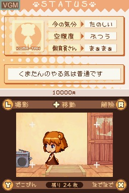 In-game screen of the game Kumatanchi on Nintendo DS