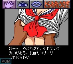 Shiawase Usagi II - Torawase Usagi Sailor Z