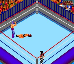 Fire Pro Wrestling - Combination Tag