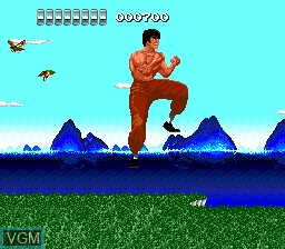 In-game screen of the game China Warrior on NEC PC Engine
