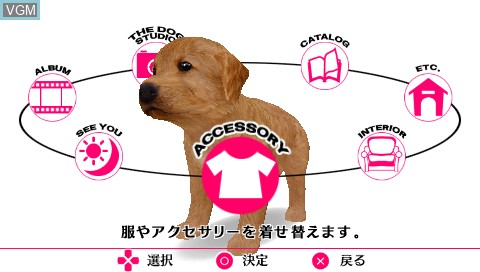 In-game screen of the game Dog, The - Happy Life - Shiawase Wanko Seikatsu Dai Ichidan on Sony PSP