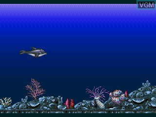 Menu screen of the game Ecco Jr. and the Great Ocean Treasure Hunt! on Sega Pico