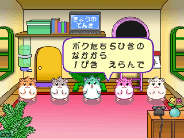 Hamster no Odekake