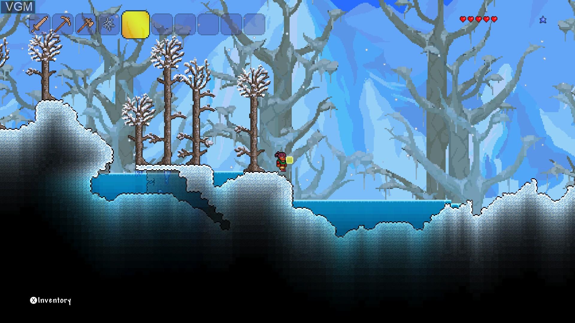 In-game screen of the game Terraria on Nintendo Wii U