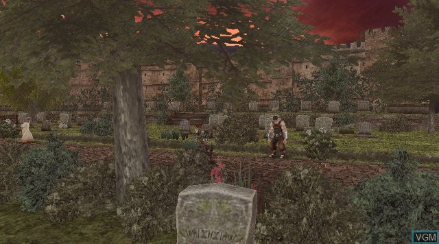 In-game screen of the game Ougon no Kizuna on Nintendo Wii