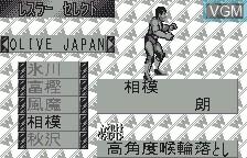 Menu screen of the game Fire Pro Wrestling for WonderSwan on Bandai WonderSwan