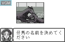 Menu screen of the game Kyoso Uma Ikusei Simulation Keiba on Bandai WonderSwan