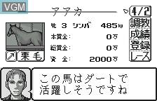 In-game screen of the game Kyoso Uma Ikusei Simulation Keiba on Bandai WonderSwan